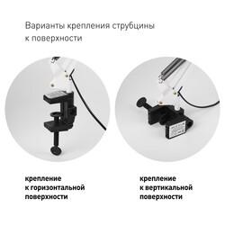 Светильник настольный  N-121-E27-40W-W белый 612309 ЭРА