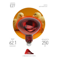 Лампа ИКЗК E27  ЭРА  220-250 R127